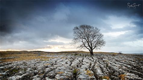 Landscape Photography Gear Nikon Landscape Photography Using Budget Gear The Loan Tree