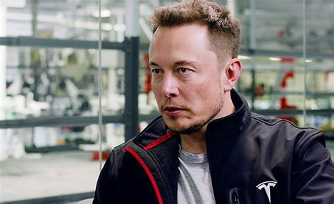 elon musk neural link elon musk says humans merging with ai is best outcome i