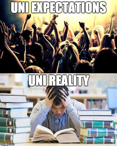 Uni Memes - uni expectations vs reality imgflip