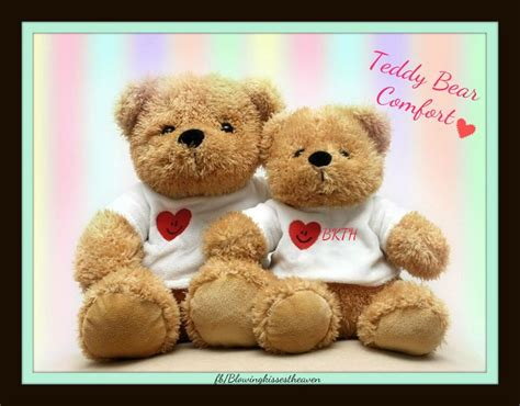 comfort stuffed animals 44 best teddy bear comfort images on pinterest teddy