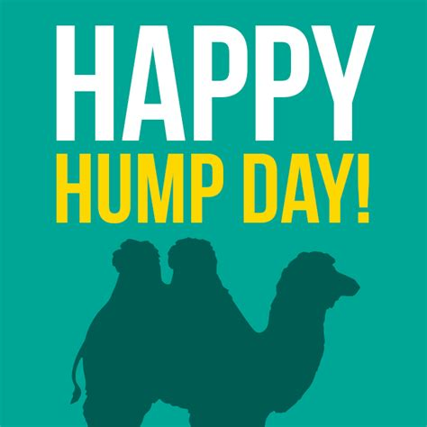 Happy Hump Day by Happy Hump Day The Tanning Shop