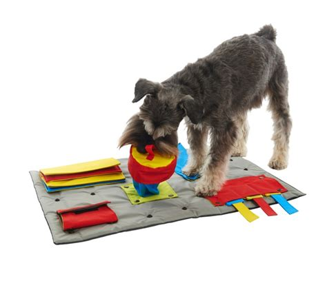 mental stimulation for dogs the buster activity mat robins