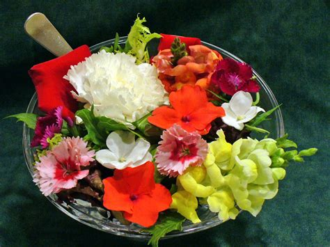 flower food cooking with edible flowers tips and hints