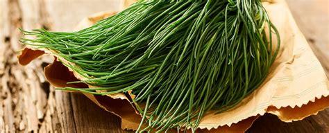 come cucinare la verdura come cucinare gli agretti sale pepe