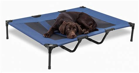 raised dog bed choosing a raised dog bed a review of the best elevated dog beds the labrador site