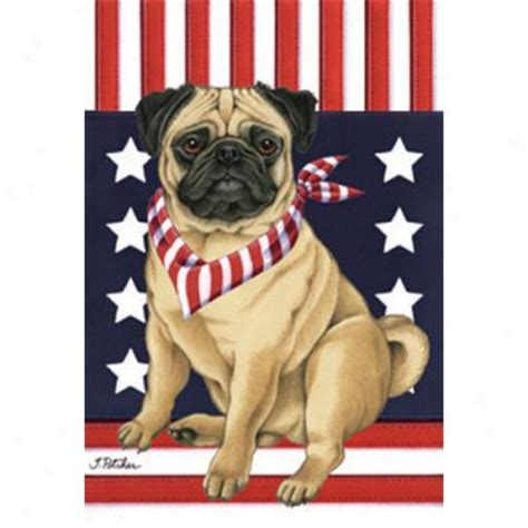 pug garden flags abo gear digs collapsible crate large ss pet supplies shop all