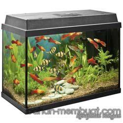 cara membuat lu hias acrylic aquarium and acrylics on pinterest