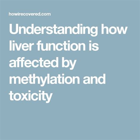 Mthfr And Heavy Metal Detox by Understanding How Liver Function Is Affected By