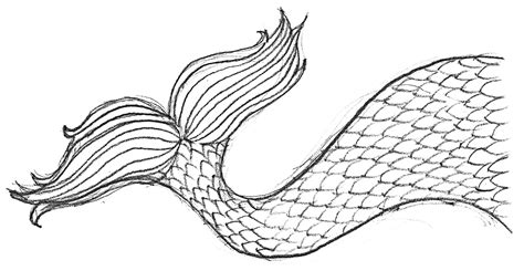 mermaid tail template sketch coloring page