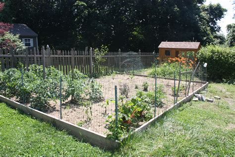 backyard fences how to chicken proof your garden modern farmer
