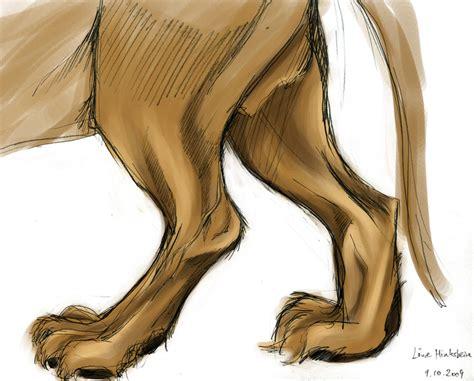 hind leg s hind leg by fuji san on deviantart