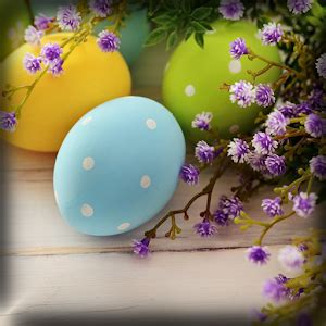 google wallpaper easter easter wallpapers hd android apps on google play