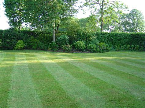 garten rasen avant garde lawns avant garde lawns