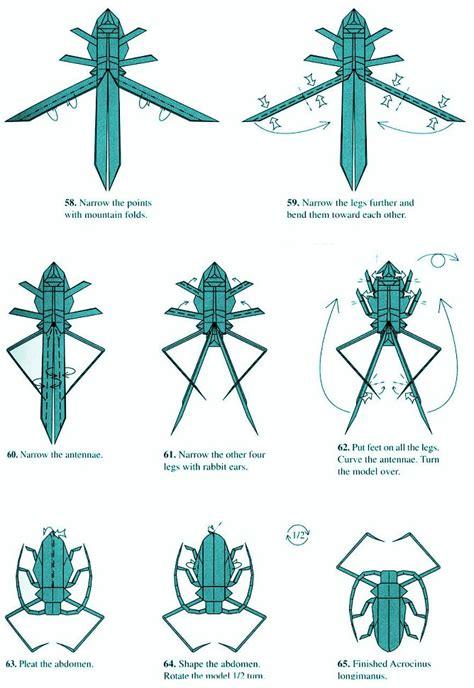 longhorn beetle  robert lang