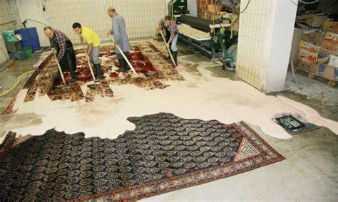mottenbefall teppich teppichw 228 sche teppichreinigung professionell und