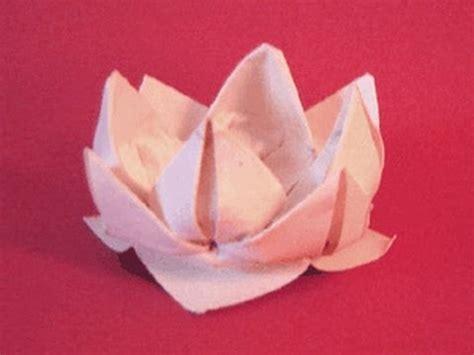 Easy Origami Lotus - origami lotus www origami