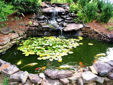 small fish pond designs  perfect  improving tiny