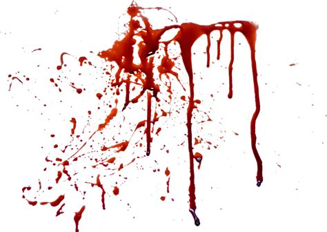 bloodstain pattern photography blood png images free download blood png splashes