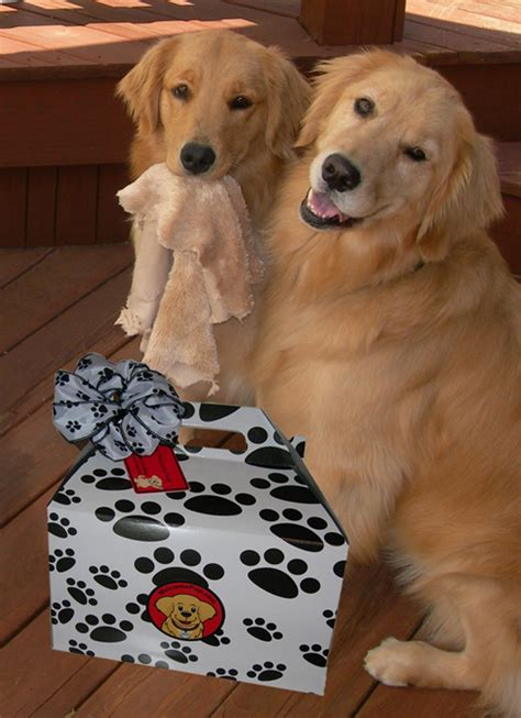 presents for dogs welcomepup gifts for dogs and