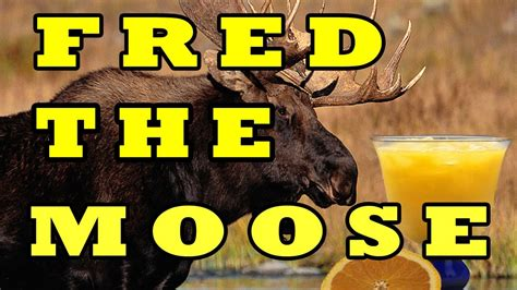 the fred song fred the moose the moose song the learning station