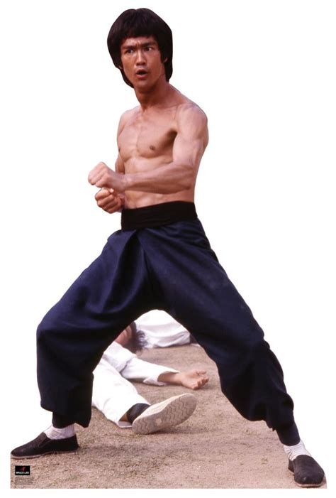 best biography bruce lee 36 best images about bruce lee on pinterest