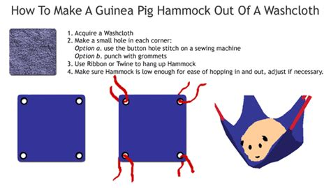 How To Make A Paper Pig - how to care for guinea pigs milner s