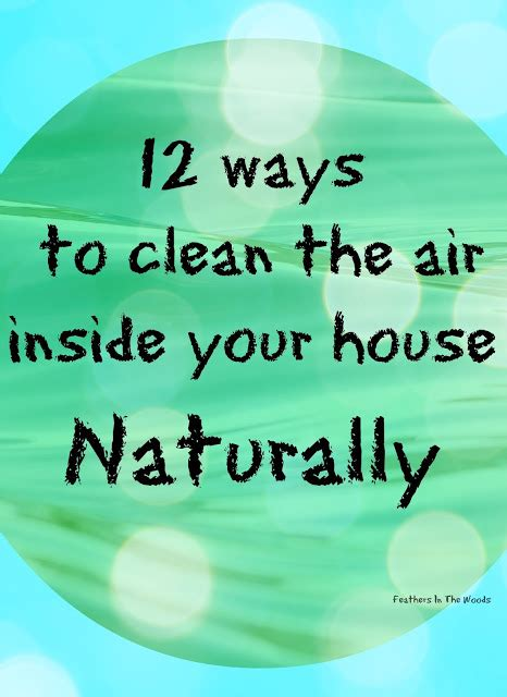 ways to clean your house 12 natural ways to clean the air inside your house