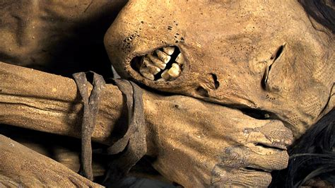 the remains of the mummies scanning ancient human remains youtube