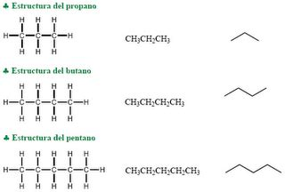 aminoacidos con cadenas alifaticas qu 237 mica org 225 nica tipo de cadenas carbonadas