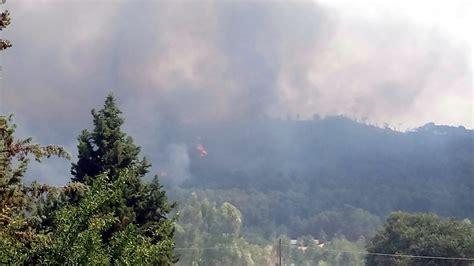 brucia ancora testo brucia ancora la provincia di enna appello di legambiente