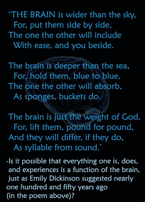 psychology images the brain poem wallpaper and psychology images the brain poem wallpaper and