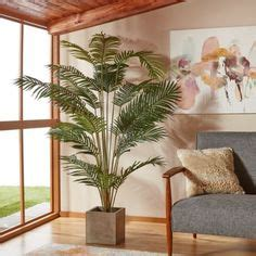 artificial plants living room palm trees images