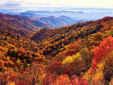 best time to see smoky mountain fall colors