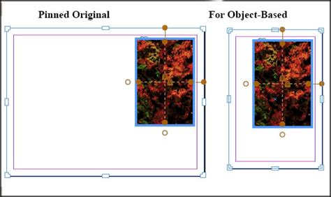 css layout rules review adobe indesign cs6