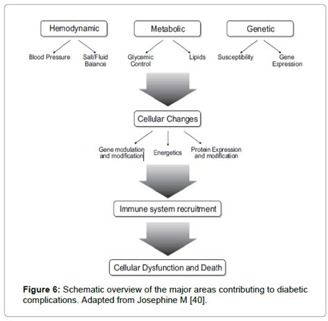 Pathophysiology Of Diabetes Type 2 Essay by Classification Pathophysiology Diagnosis And Management Of Diabetes Mellitus Omics International