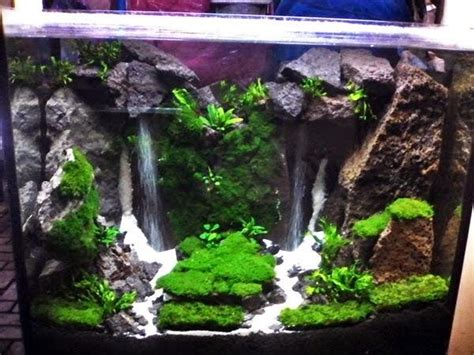 waterfall aquascape learn and make aquascape waterfall learning and creating