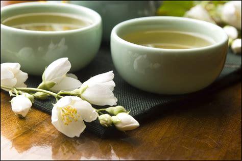 Teh White Tea top 10 best white tea brands in the world