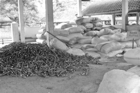 Tepung Singkong Pakan Ternak singkong untuk ransum sapi berprotein tinggi