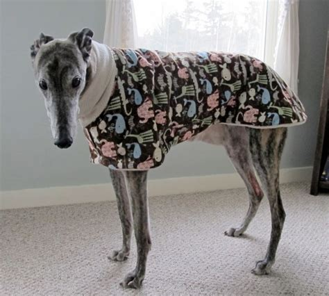 pattern greyhound coat 78 best ideas about dog coat pattern on pinterest dog