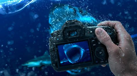 wallpaper camera 3d underwater photography manipulation full hd wallpaper and