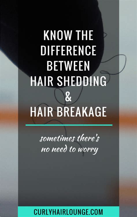 the difference between shedding and hair breakage