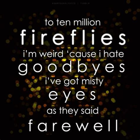 lyrics cause i about my fireflies owl city song quotes quotesgram