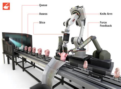 Poultry Cutter Tpc 01 automation threatens meatpacking replacing workers with smart machines limits to growth