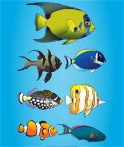 Marine 35gr Makanan Ikan Laut Free kartun hewan laut vector kartun vektor vektor gratis gratis