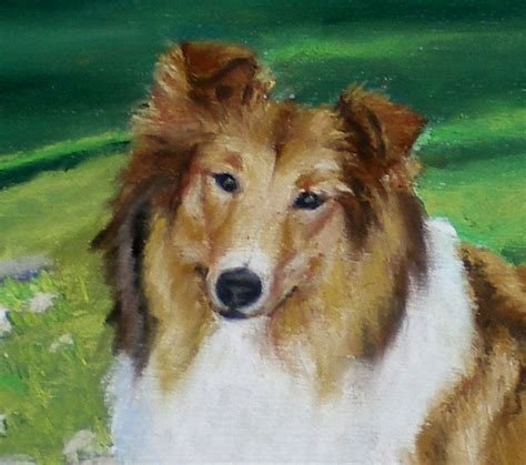lassie puppies commissioned portraits from portraits of animals