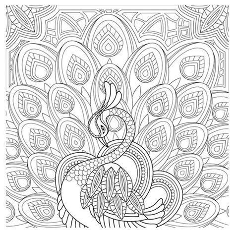 grown up coloring pages cats coloring pages amazing of adult coloring pages peacock