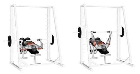 chest press machine vs bench press smith machine bench press benefits 28 images smith
