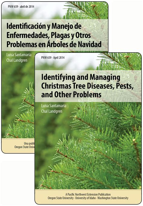 identifying and managing christmas tree diseases pests