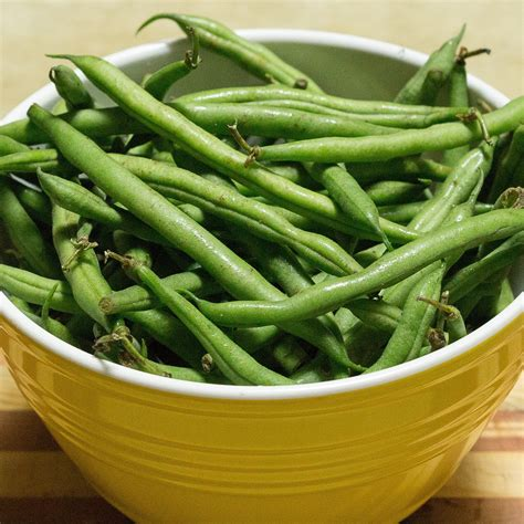 green bean diet for dogs human food for dogs 41 human foods dogs can and can t eat dogspie