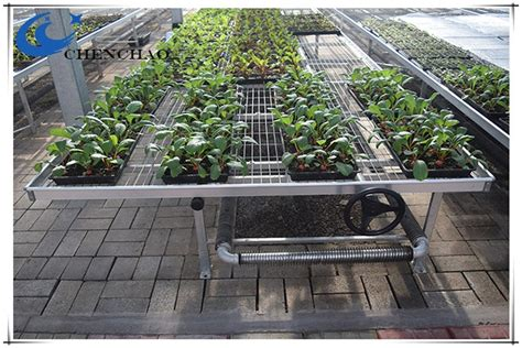 greenhouse benches for sale breeding tray ebb flood used greenhouse benches for sale